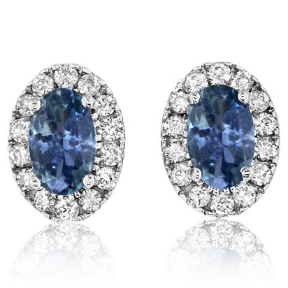 14K White Gold Montana Sapphire/Diamond Earrings | ECC231MS2WI