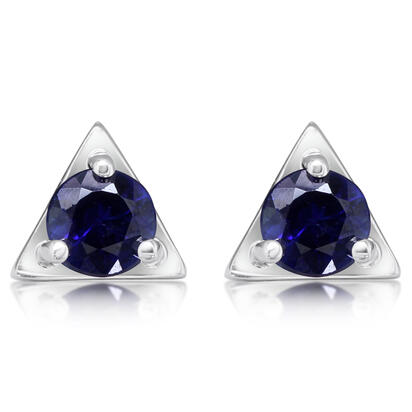 14K White Gold Blue Sapphire Earrings | ECC232S2XWI