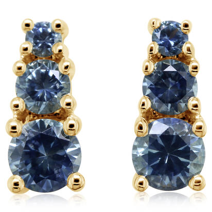14K Yellow Gold Montana Sapphire Earrings | ECC237MSXCI