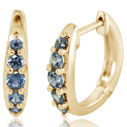 14K Yellow Gold Montana Sapphire Earrings | ECC238MSXCI