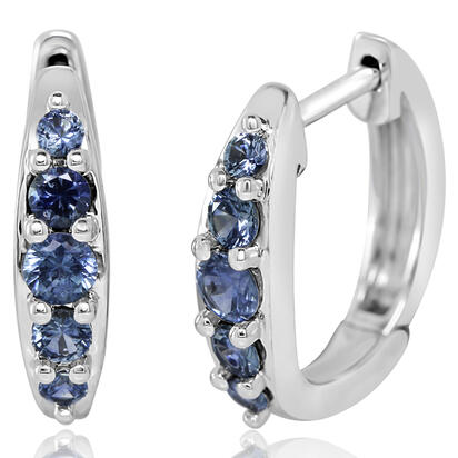 14K White Gold Montana Sapphire Earrings | ECC238MSXWI