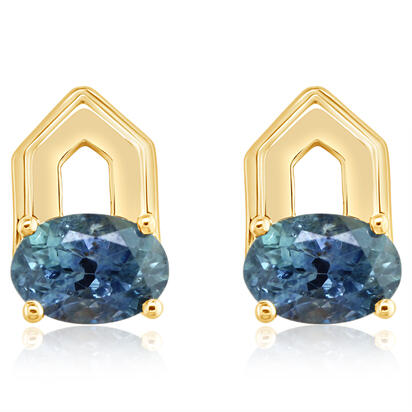 14K Yellow Gold Montana Sapphire Earrings | ECC244MSXC