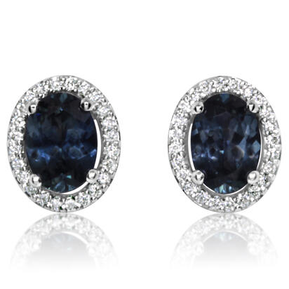 14K White Gold Montana Blue Sapphire/Diamond Earrings | EPF201MS1WI