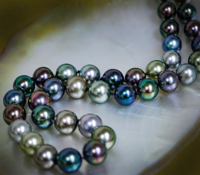8-10.1mm 45pc Near Round Tahitian Multi Color Pearl Strand with 14K White Gold Clas